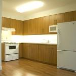 1 bedroom suite kitchen